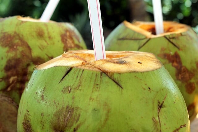 hangover cure top tips glasgow foodie coconut water