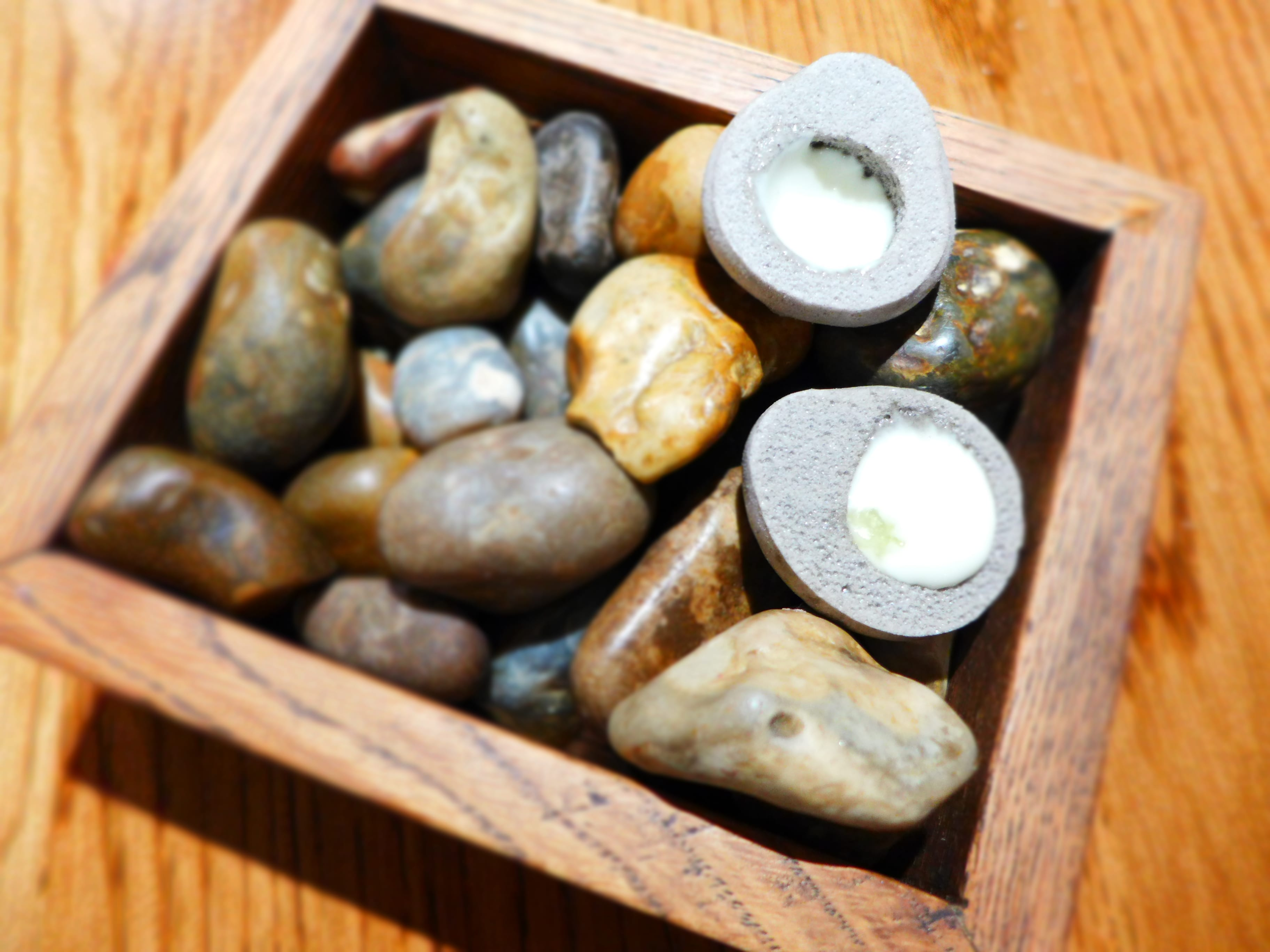 L'enclume - Oyster pebbles (halved)