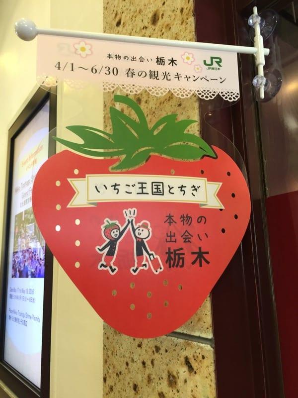 nikko kesarazu japan glasgow foodie explorers travel
