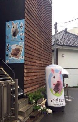 Hedgehog_Cafe_Japan OUtside