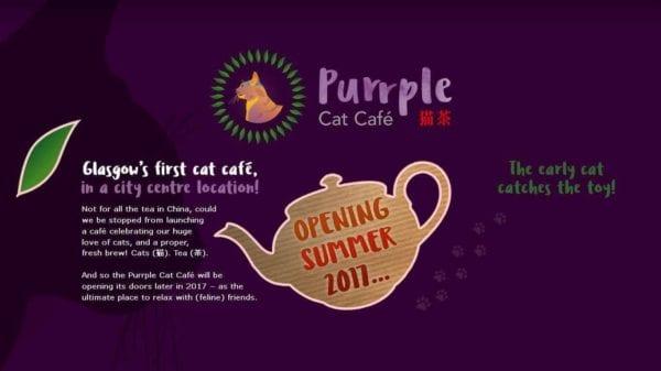 glasgow food blog foodie explorers purrple cat cafe