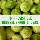 10 Irresistible Brussel Sprout Ideas