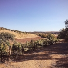 Discovering Alentejo, Portugal