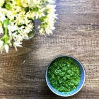 Foraged Wild Garlic Pesto Recipe