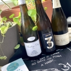 Loving Riesling with Wine Events Scotland and Luvians