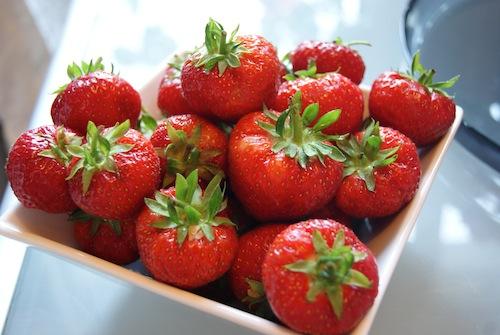Scotty Brand Strawberries