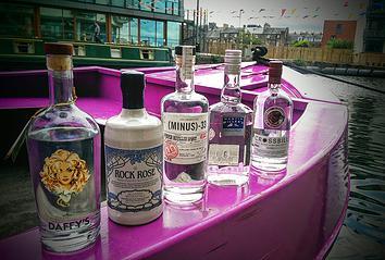 juniper_cruise_gin_solid_liquids