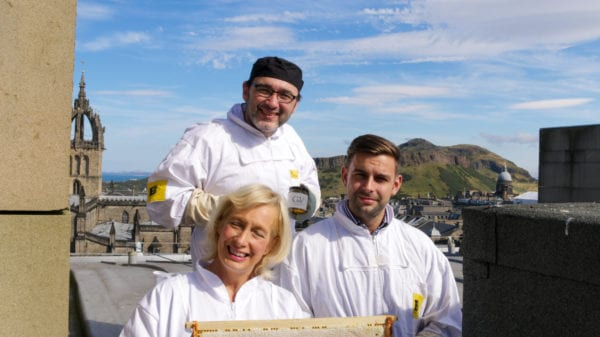 plan bee edinburgh hives hotel
