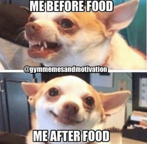 15 Memes For Those Who Love Food Foodie Explorers