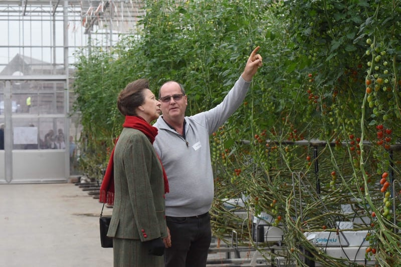 Royal visit for Hawick grown tomatoes