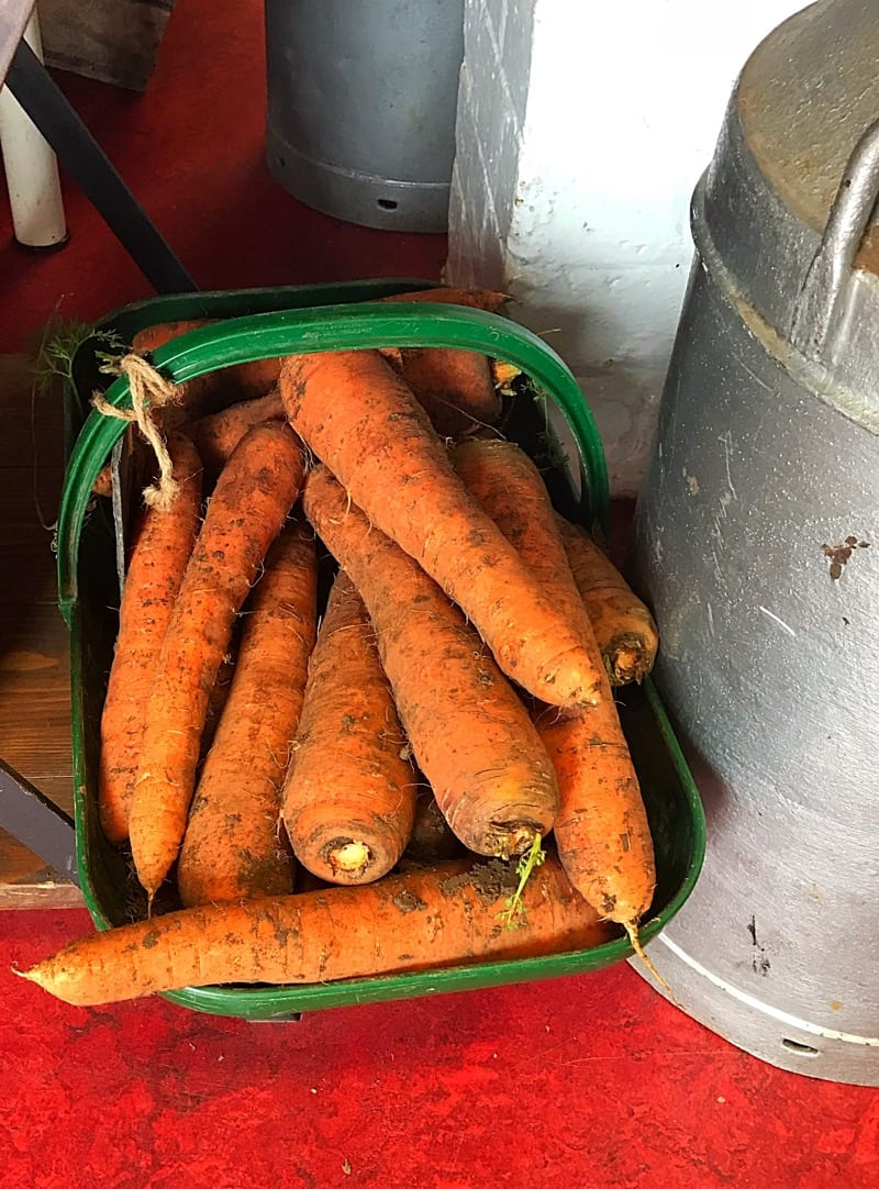 ardross farm foodie trip fife scotland foodie explorers