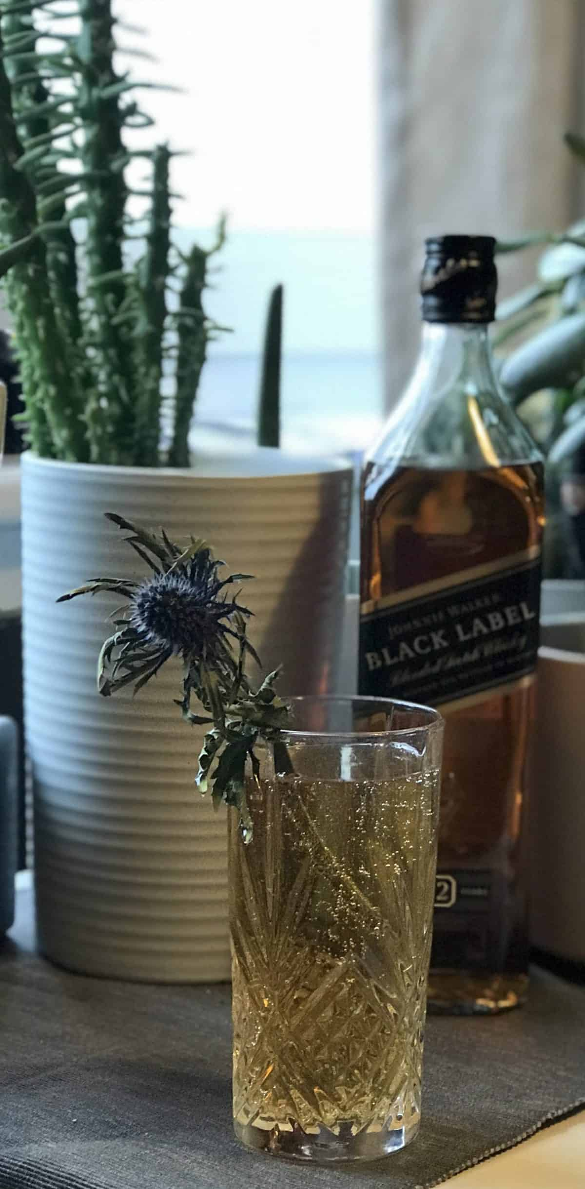 johnnie walker black label scottish highball cocktail