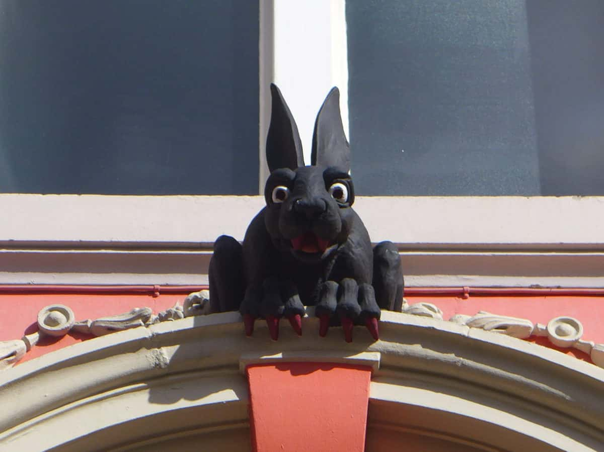Vampire Rabbit Newcastle