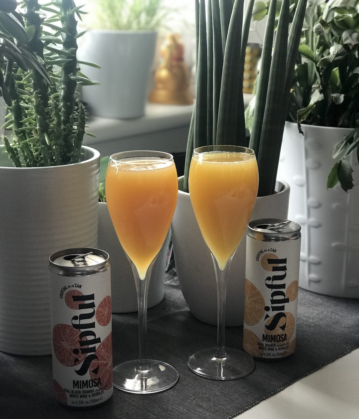 sipful drinks review