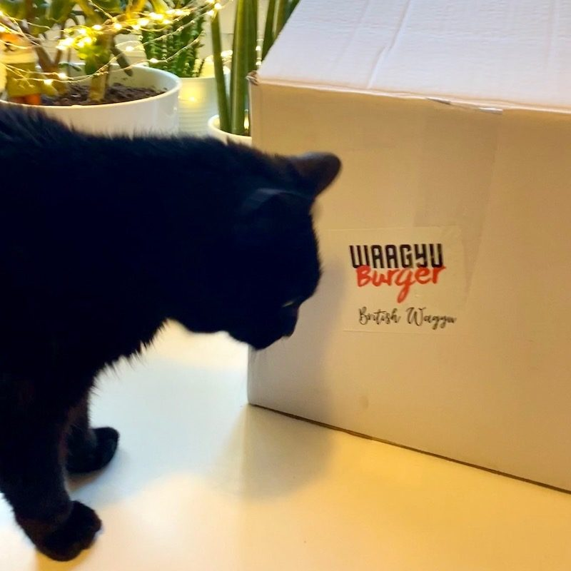 fred checks out the Wagyu burger box