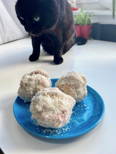 fred approved snowballs