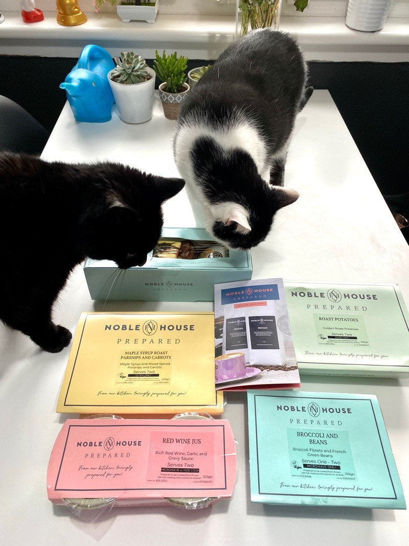 Noble house prepared Fred and Cleo sniff